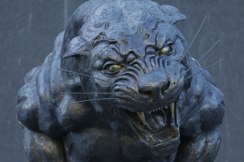 The Scratching Post: Carolina Panthers News 6/22/17