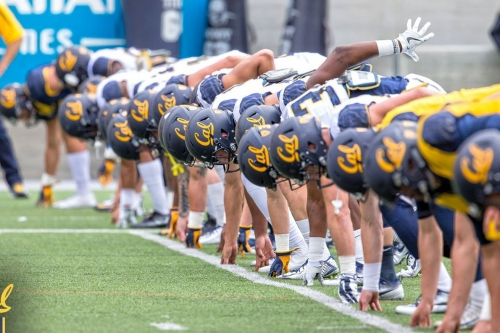 VIDEO: Cal football players in the midst of summer workouts