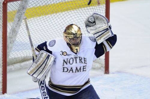 Notre Dame hockey in the Big Ten is officially a thing.
