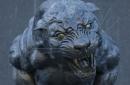 The Scratching Post: Carolina Panthers News 7/21/17