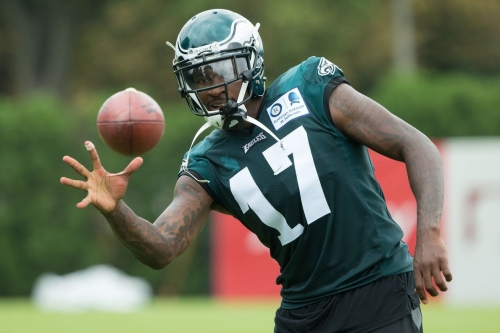 Several South Carolina alumni look to make their mark in NFL training camps