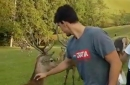 Here's a video of Dario Saric visiting a deer farm