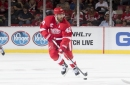 Report: Wings' Zetterberg likely to play 2 more seasons