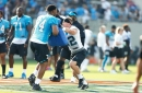 Panthers DE Daeshon Hall suffers minor knee injury in practice, could still play Thursday night