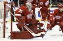 Red Wings outlook: Jimmy Howard looks to excel over full season
