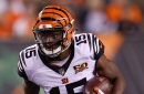 Cincinnati Bengals at Green Bay Packers injury report: John Ross sidelined; Geno Atkins limited again
