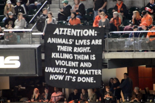 Group calls for Berkeley meat ban at Giants game