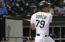2017 White Sox hitting leaders in historical context