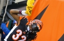 NFL Week 7 Primer: Cincinnati Bengals at Pittsburgh Steelers stats and facts