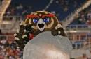 Sunshine Seven Review Week 9: Owls Take Flight