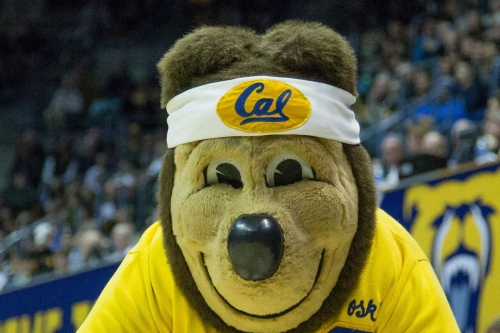 Cal Commit Jacobi Gordon signs with the Bears!