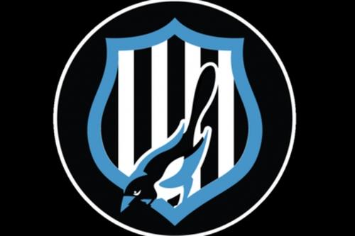Tuesday's Toon Talk: Rafa Benitez's Newcastle United