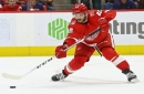 Red Wings' Martin Frk might be out a week