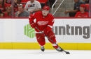 Jeff Blashill explains why Red Wings recalled Brian Lashoff over Joe Hicketts