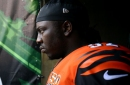 Bengals Bytes (11/19): Getting younger by waiving Pat Sims