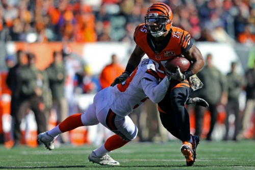 Updated Playoff Standings: Do the Bengals still have a shot?