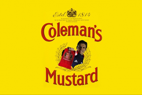 Cutting the Mustard: How did Chris Coleman do when we took on Reading at the weekend?