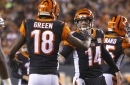 NFL Week 13: Bengals' best play from loss against Steelers