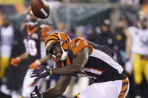 NFL Week 13 Steelers at Bengals: The good, the bad and the ugly