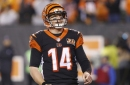 The Orange and Black Insider Bengals podcast: Bears and tigers, oh my!