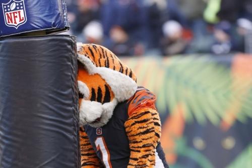 Bengals Bytes (12/11): Bears provide rock bottom for 2017 season