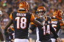 The one player the Bengals can't afford to lose is an obvious one