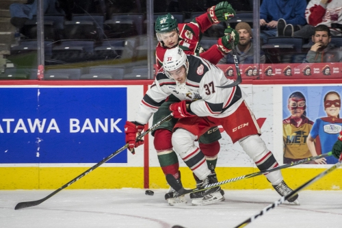 Is this the time prospect Zach Nastasiuk sticks with Griffins?