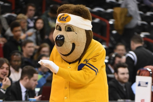 Cal MBB Live Chat: Starting conference play at... The Farm?!