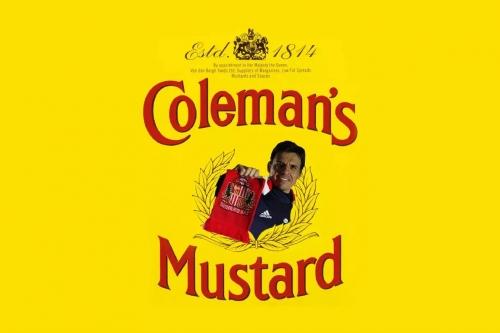 Cutting the Mustard: Hull - Analysing Sunderland team selection, tactics & Coleman's performance