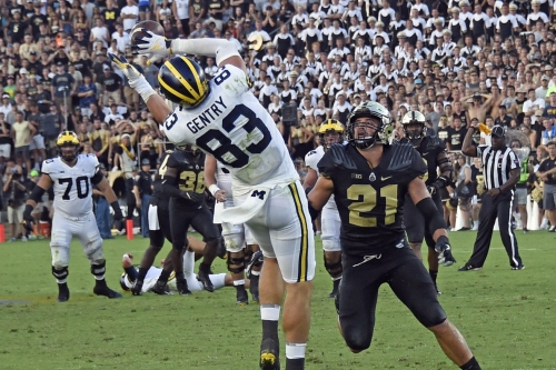 Meet Michigan's newest pass-catchers: first came the talent, now there's depth