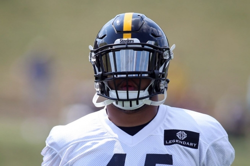 Roosevelt Nix's story to the Steelers is material which turns into movies