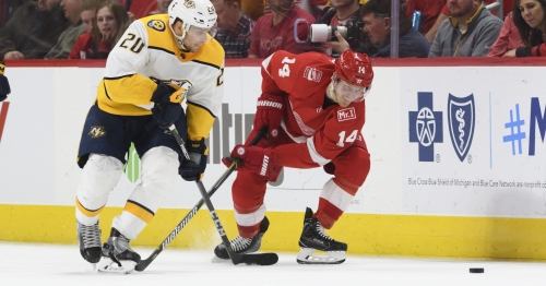 'Not good enough': Red Wings feisty, but fall to Predators