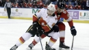 Flames recall Andrew Mangiapane, Tanner Glass from AHL