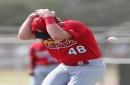 Just another bruising day at the ballpark for Cardinals' Bader