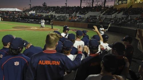 No. 13 Auburn Takes on Georgia Tech, Memphis in the Midweek