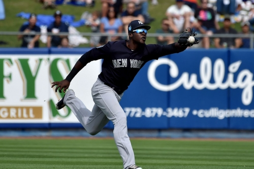 Yankees Prospects: Spring training winners and losers
