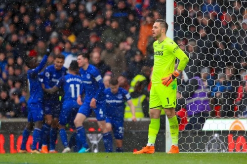 Stoke City 1, Everton 2: How the Potters rated (including Charlie Adam)