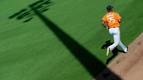 As spring progresses, confidence grows for Orioles Rule 5 pick Pedro Araujo