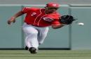 Roster comes into focus as Cincinnati Reds trim nine