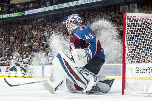Predators vs. Avalanche Series Preview: Avs Goaltenders