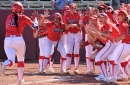 Like a flock of geese, Arizona softball hopes to 'stay in formation and keep sailing' through the season