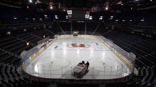 Calgary city councillor files motion to reignite Flames arena talks