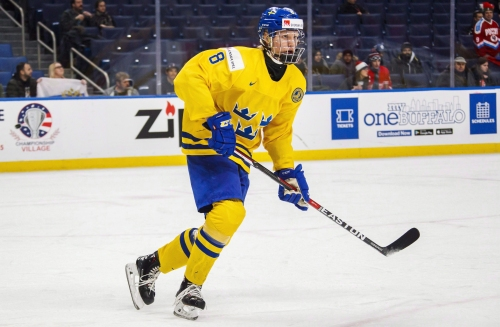 NHL draft lottery: Senators, Habs in mix to land Swedish star Rasmus Dahlin