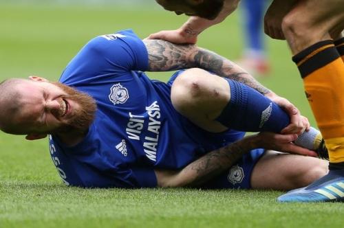 Cardiff City midfielder Aron Gunnarsson undergoes surgery after injury at Hull