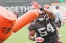 Browns release Dominique Alexander, Darius Jackson