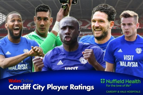 The flawless Cardiff City player ratings as you've never seen them before as Bluebirds clinch promotion with draw against Reading