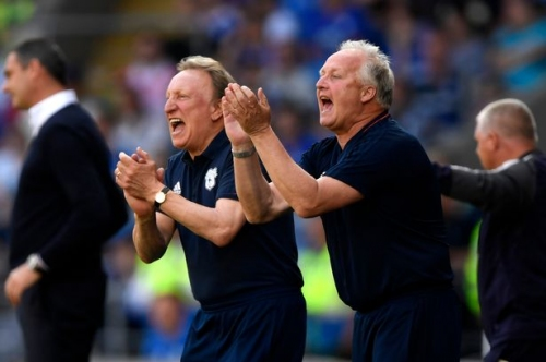 Cardiff City promoted to the Premier League amid wild celebrations as Fulham lose at Birmingham