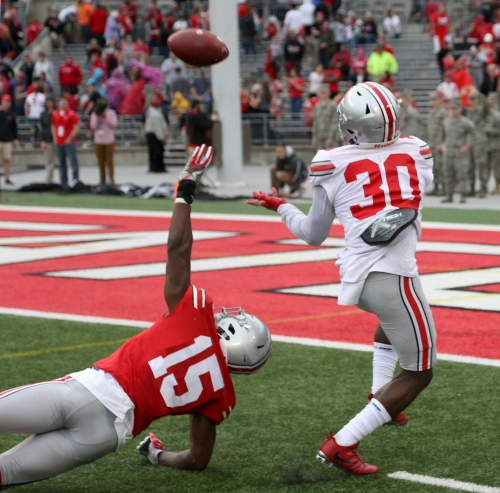 Another Ohio State transfer gets Buckeyes down to scholarship limit