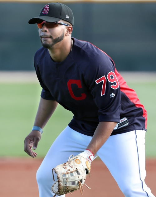 Willie Castro shines defensively for Akron RubberDucks: Cleveland Indians Minors 2018 (video)