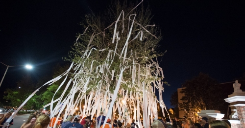 There's just nothing quite like rolling Toomer's Corner after an Auburn football win